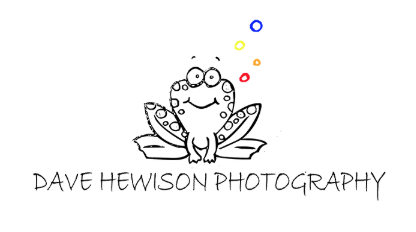 dave hewison photography